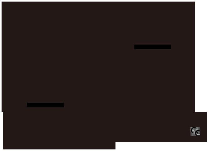 priviate label on eyeglasses